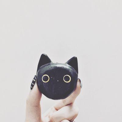 Cat Love All Black Guangzhou HongKong Enjoying Life Cute