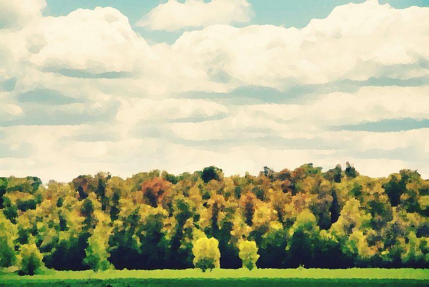 Oil paint forest Wood Forest Paint Art Sky
