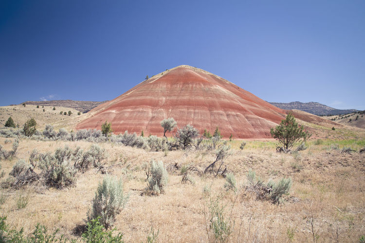 Painted Hills in Mitchell, US Arid Climate Beauty In Nature Clay Day Geology Hills Landscape Mountain Nature Nature Phenomenon No People Non-urban Scene Outdoors Painted Hills Physical Geography Remote Sand Scenics Tranquil Scene Tranquility