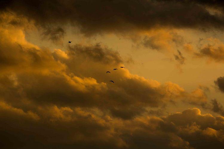 Cloud Cloud - Sky Sky Sunset