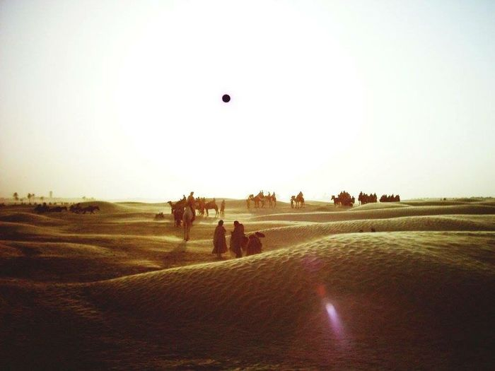 Tunisia Desert Sahara Sport Field Sand Outdoors Match - Sport Landscape Nature Mammal Day Clear Sky People Competition Adult Adults Only Sky An Eye For Travel