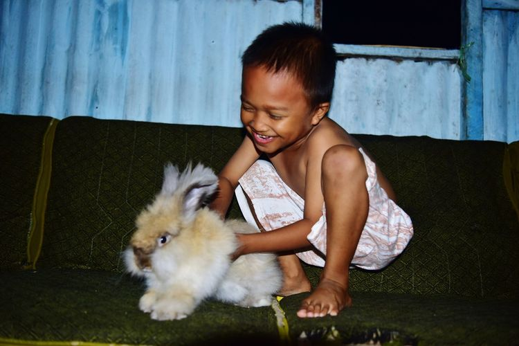 Cheerful boy playing with rabbit