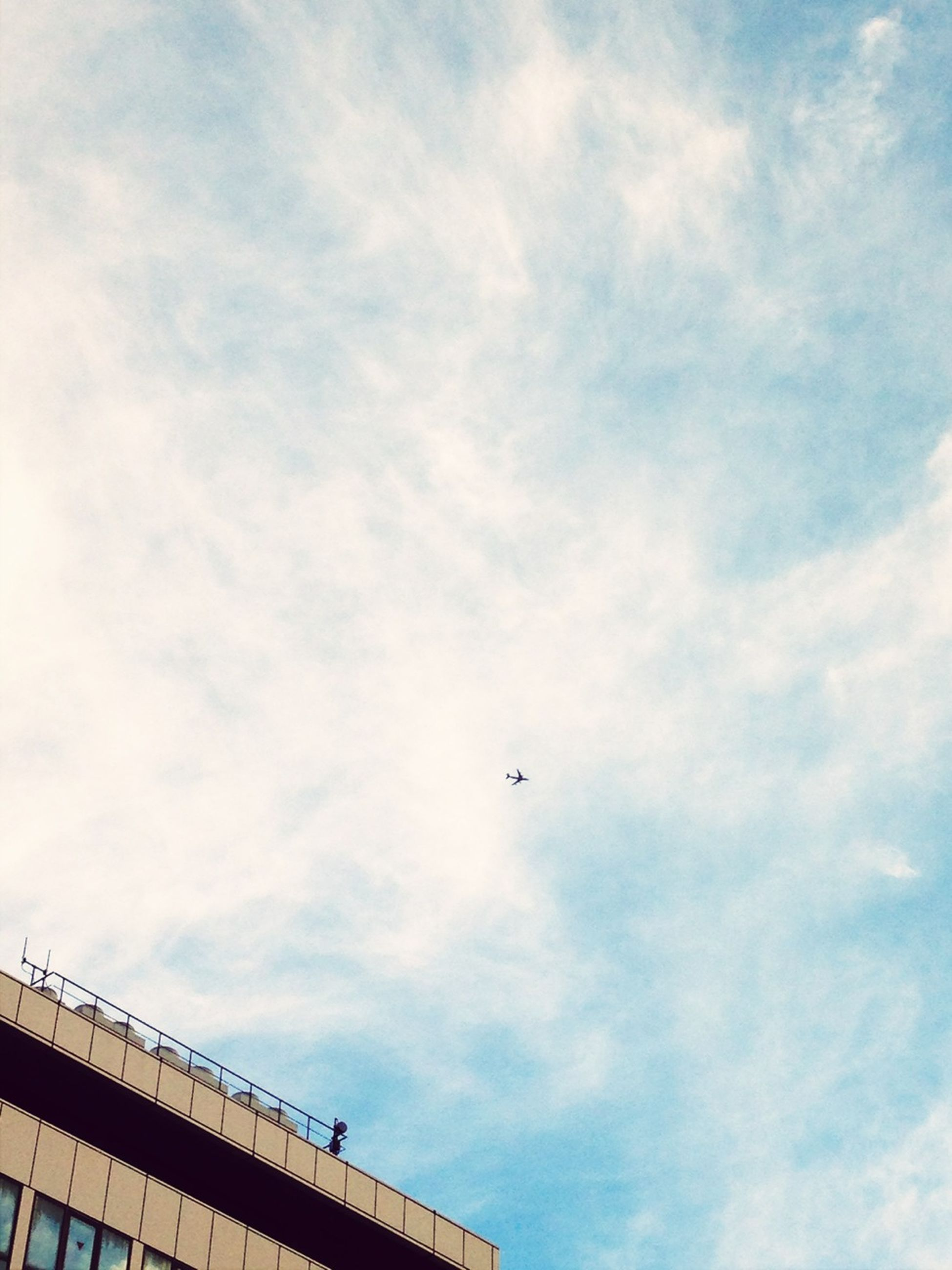 low angle view, sky, flying, architecture, built structure, building exterior, bird, cloud - sky, mid-air, transportation, animal themes, cloudy, airplane, cloud, air vehicle, day, animals in the wild, mode of transport, outdoors, wildlife