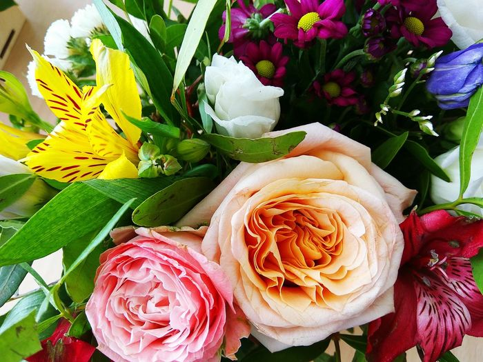 bouquet of roses and different flowers Abstract Rose - Flower Roses Petal Holiday Wedding Wedding Photography Happy Roses Multi Colored Flower Yellow Rosé Backgrounds Lily Green Nature Plants And Flowers Plant Abstract Photography Summer Exploratorium