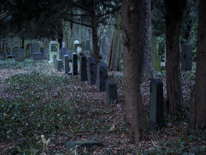 Cemetery Cemetery Friedhof Grave Graves Gräber Tombstone