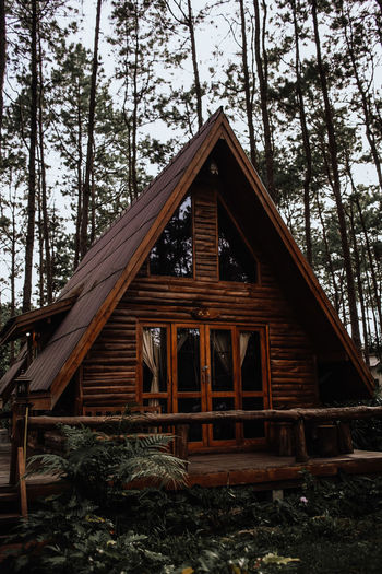 Low angle view of wooden house amidst trees in forest