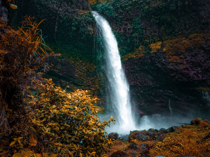 High angle view of waterfall in forest during autumn