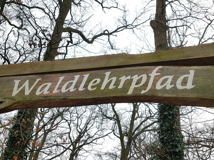 """Wooden Sign """"Waldlehrpfad"""" (Forest Teaching Path) Wooden Sign Wooden Sign Post Waldlehrpfad Text Tree Low Angle View Communication Day Bare Tree Outdoors"""