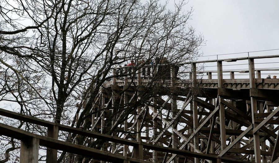 Attraction theme park the Efteling, Kaatsheuvel, the Netherlands Architecture Built Structure Connection Tree Bridge Sky Bridge - Man Made Structure Railing Bare Tree Nature No People Day Metal Transportation Low Angle View Footbridge Building Exterior Plant Outdoors