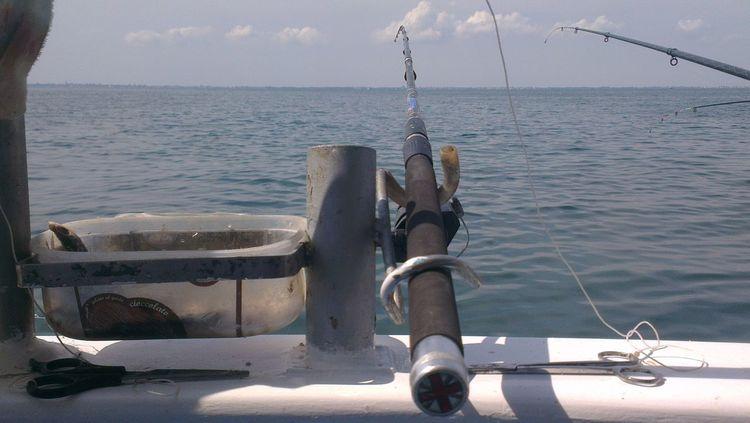 Pescando... pescando... Relaxing Born To Be Wild Relax Time  Portogaribaldi