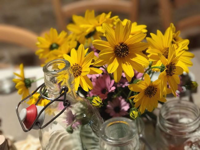 EyeEm Selects Table Flower Yellow No People Freshness Petal Close-up Flower Head Fragility Nature Indoors  Day Paint The Town Yellow Bottle Bottles Collection Wine Bottle Glass - Material Paint The Town Yellow