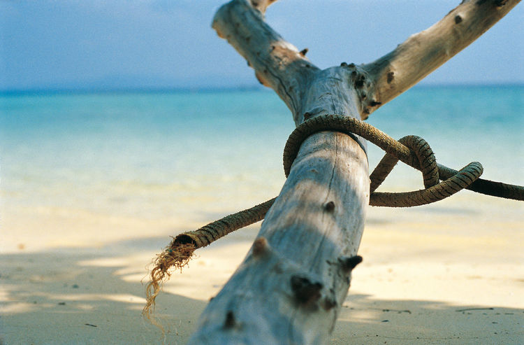 Analogue Photography Clear Blue Sky Nature Rope Thailand Travel Photography Tree Trunk Beach Cristal Clear Water Diascan Horizon Over Water Idyllic Scenery No People Sand Sea Sea And Sky Water