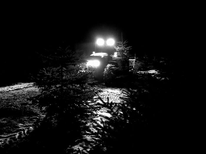 Night Illuminated No People Black Background Christmas Tree Trecker Traktor Winter Outdoors Nature Farm Farm Life Abies Picea Nightphotography HuaweiP9 Huwei P9 Huaweiphotography Blackandwhite Black And White Black & White Welcome To Black The Secret Spaces Black And White Friday Business Stories