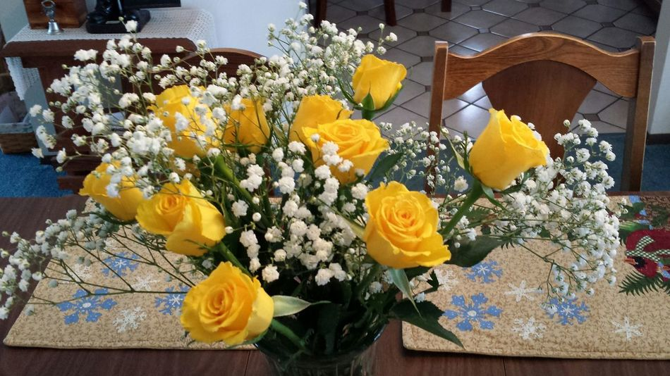 Flower Yellow Freshness No People Flower Head Roses Flowers  Rose Petals