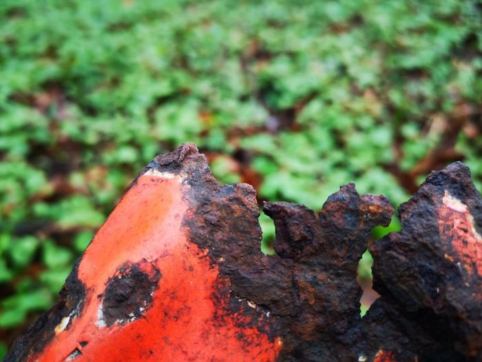 Rusty EyeEm Metal Surface Material Construction Closeup In Nature Into The Woods Photography Into Nature Information Signs Trafic Lava Volcano Close-up