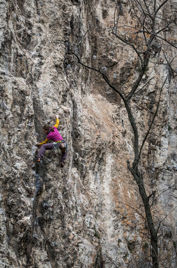Klettern Rock Tree Tristesse Wall Adventure Challenge Cliff Climbing Colorful Colorful Clothes Extreme Sports Limestone Nature One Person One Woman Only Osprey  Outdoors Rock - Object Rock Climbing Rock Climbing Wall Rock Face Slowenia Sport Sports Photography