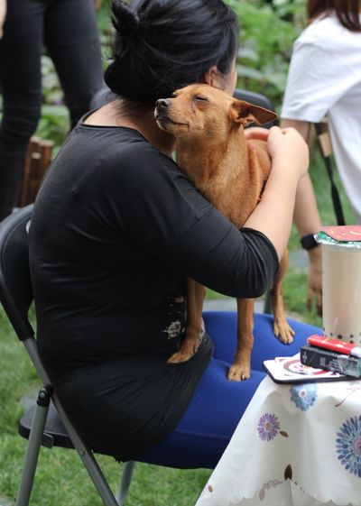 Woman sitting with dog in lap