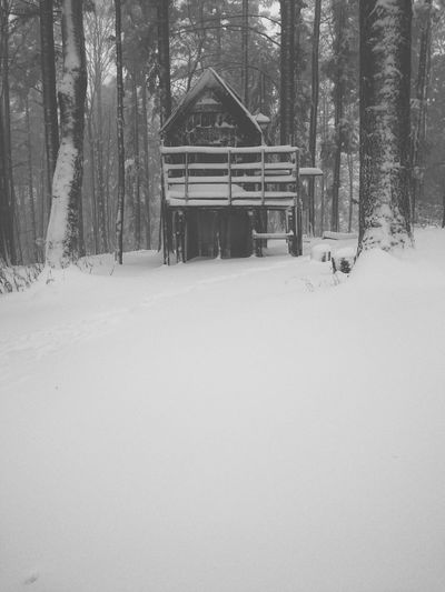 Snowy white part 3 Cabin In The Woods Cabinporn Blackandwhite Photography Monochrome Snow ❄ Hillside Nature Outdoor Photography Winter Wintertime