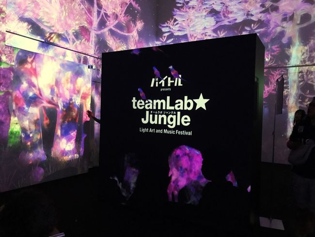 Text Communication Indoors  No People Illuminated Night Multi Colored Close-up 渋谷 チームラボ Jungle