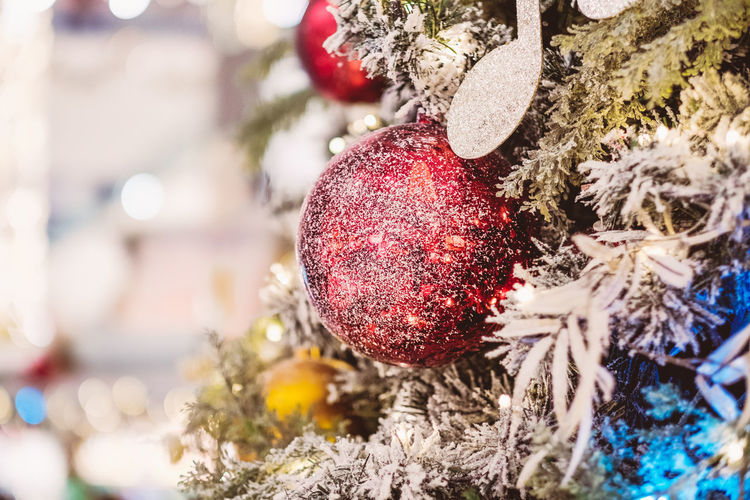 Holiday Christmas Christmas Decoration Christmas Ornament christmas tree Decoration Celebration Tree Red Close-up Holiday - Event No People Hanging Nature Focus On Foreground Celebration Event Selective Focus Religion Christmas Lights Bauble
