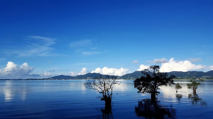 Phuket Phuket,Thailand Thailand Water Sea Blue Mountain Reflection Sky Cloud - Sky Calm Standing Water Fishing Pole