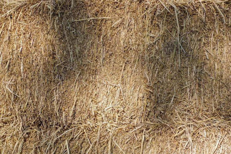 Full frame shot of hay bales on landscape