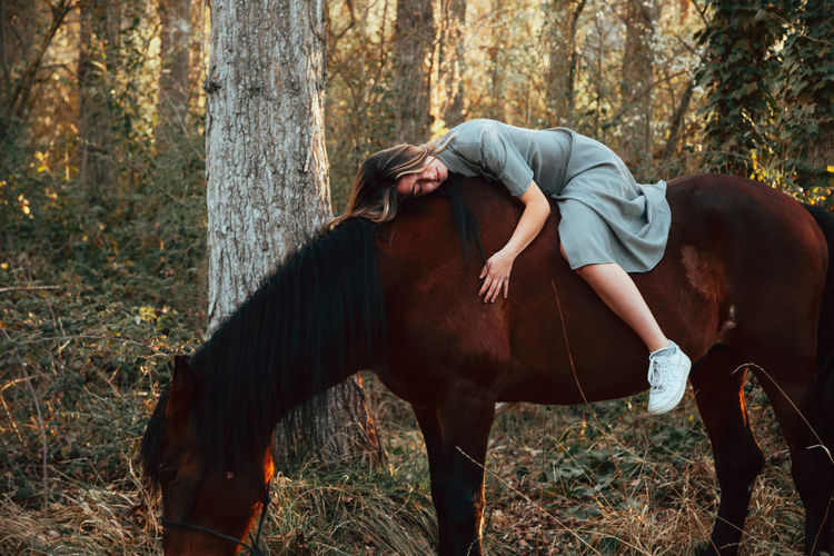 Full length of a horse in the forest