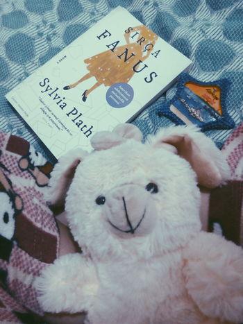 Love ♥ Lovely Star çobanyıldızım Sırçafanus Sylviaplath Sylvia Plath  Thebelljar The Bell Jar Feminism Yeay Good Times Kitap Book Pijamas Bear Ensevilenler