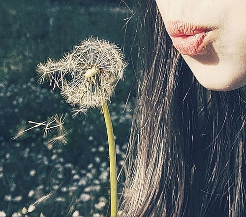 One Young Woman Only Young Women Human Lips Close-up Outdoors Itsakindofmagic Dreamingmood Letmebeme Personal Perspective Fragility Inspiration Loneliness EyeEm Beauty In Nature Nature Makeawish Dandelion Dandelions Dandelion Seeds Dandelion Seed Head Breathe One Woman Only Human Body Part People Human Face The Portraitist - 2017 EyeEm Awards