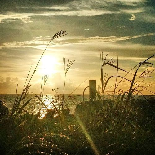 Getting ready for Labor Day Sunset at Naples, Florida Paradisecoast Visitflorida Sunset Sky_drame