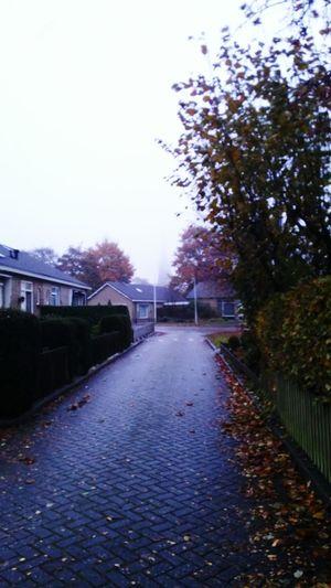 Kerk Toren Mist Sky Day No People Tree