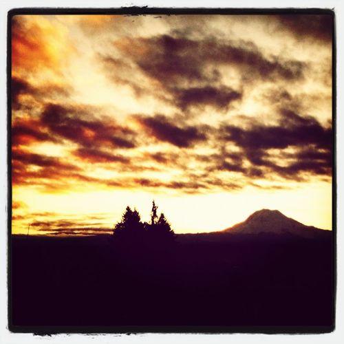 Mt Rainier Corners