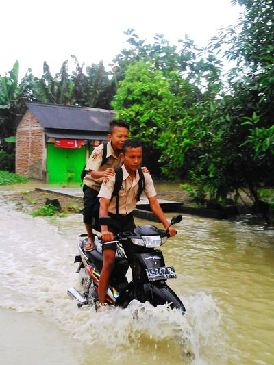 Don't be late! Living Bold Go To School Flood