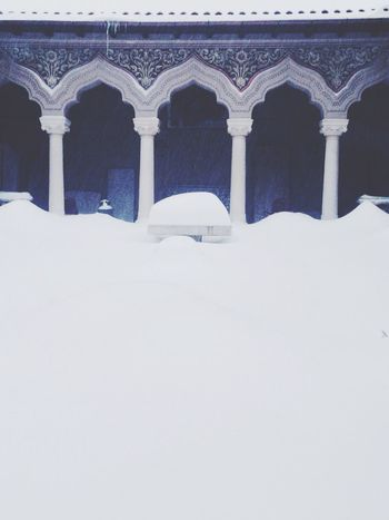 Winter Wonderland Snow Winter White By CanvasPop