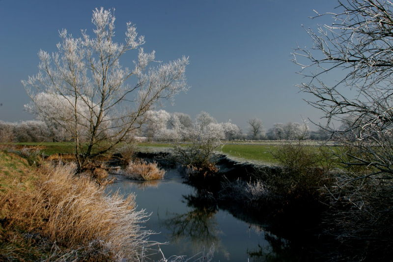 First Flurry of Snow Bare Tree Beauty In Nature Blue Blue Sky Calm Clouds Cotswold Dramatic Frost Frosty Grass Idyllic Landscape Nature Outdoors Reflected Light Reflections In The Water River Rural Landscape Rural Scene Sky And Clouds Sky Over Fields Snow The Cotswolds Winter