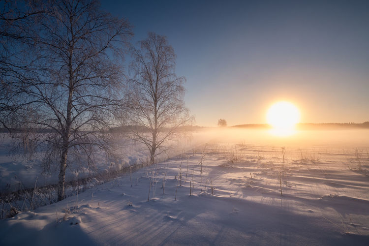 Scenic winter landscape with sunrise and fog at morning in Finland Snow Winter Cold Temperature Sky Tree Nature Sun Sunlight Frozen Sunset Scenics - Nature Beauty In Nature Environment Tranquility Landscape No People Covering Lens Flare Outdoors Nature Sunrise Finland Mist Misty Fog