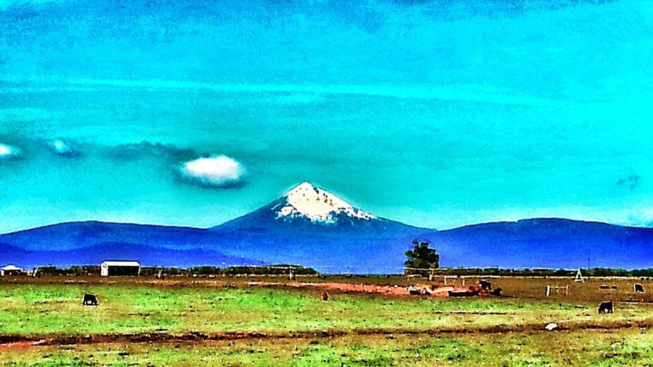 Mt Shasta from just north of Klamath Falls, Oregon