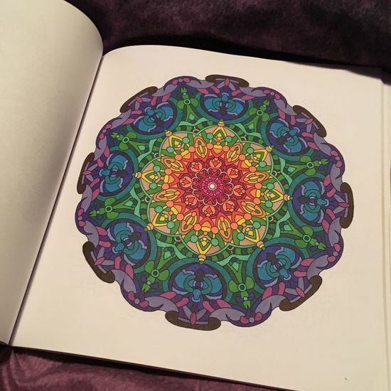 Mandala Adult Coloring Book Rainbow Colorful Sharpies  Hobby Design Pretty DIY Market