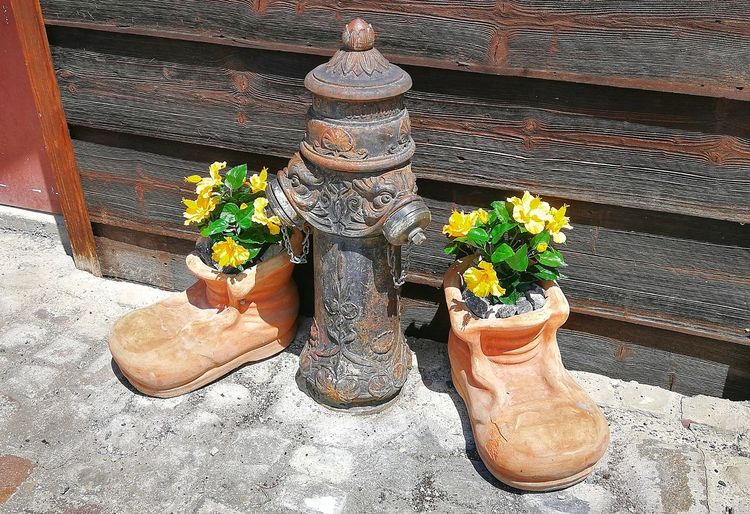 Flowers Flower Pot Hidrant Vintage Vintage Hidrant Switzerland Alps EyeEmNewHere Meadow Flowers Switzerland Matt Weissenberge Terracotta Terracotta Shoes Cottage High Angle View Close-up Footwear Wooden Floor Stone Tile Ground Shoe