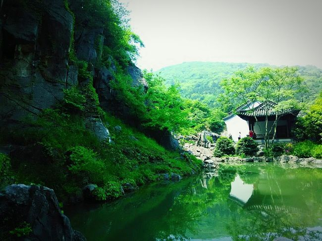Taking Photos Trees And Sky Old Building  Trip Photo China Style Green Nature China Culture