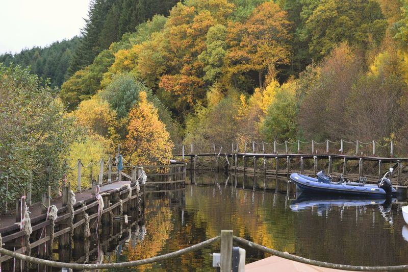 Docked in the scenery Tree Nature No People Water Day Growth Tranquility Outdoors Beauty In Nature Tranquil Scene Scenics Sky Architecture Willow Tree Scotlandsbeauty Autumn🍁🍁🍁 Scotland Mountain Loch  Loch Tay Lost In The Landscape