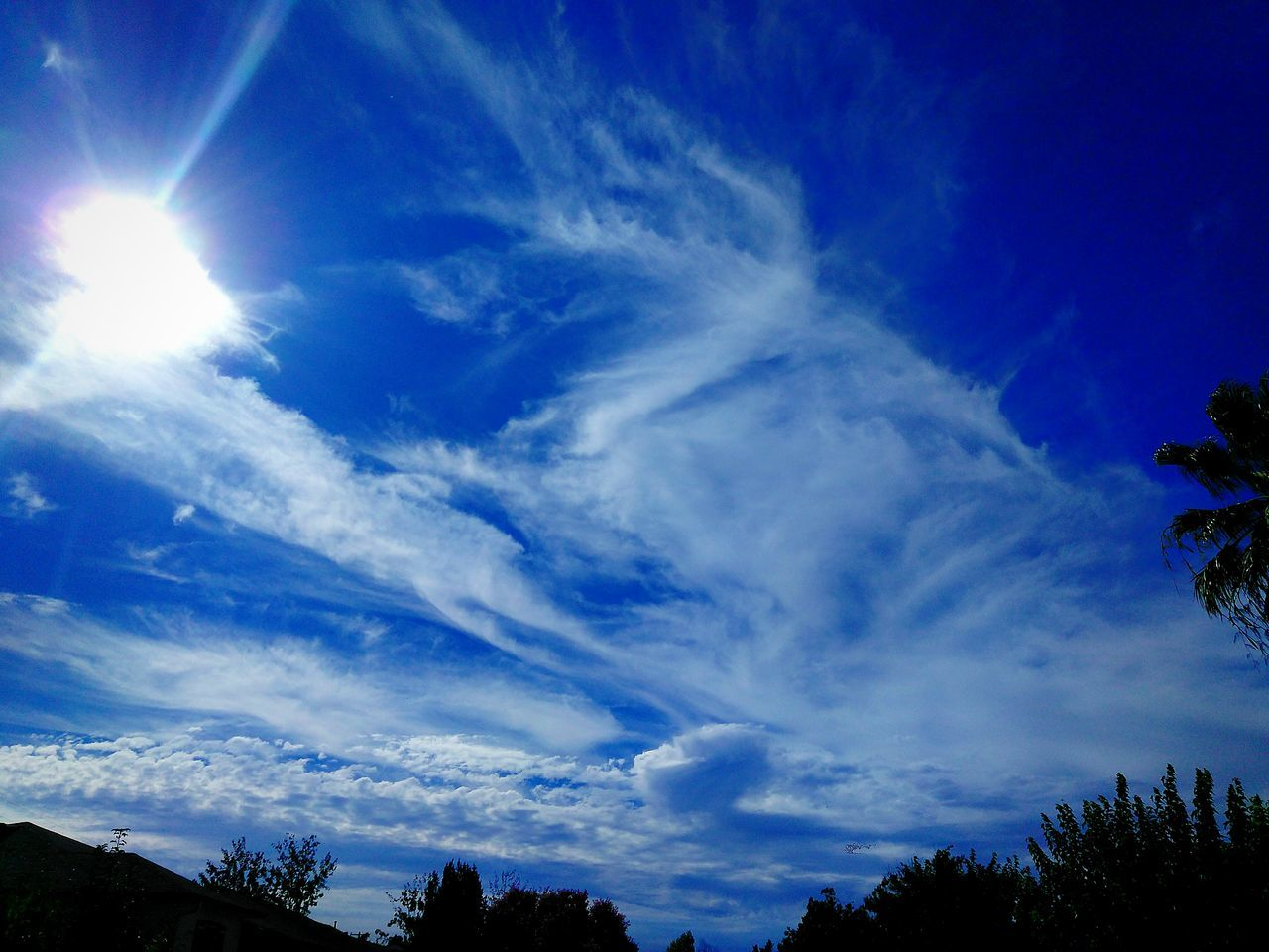 sky, low angle view, cloud - sky, beauty in nature, scenics, nature, blue, tranquil scene, tree, tranquility, no people, outdoors, day, sunlight, silhouette, growth