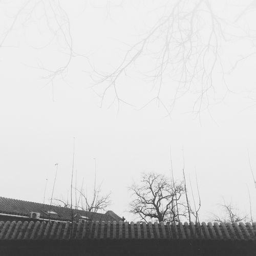 Hello World Black & White Blackandwhite Sky EyeEm Nature Beautiful