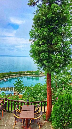 The Essence Of Summer Summertime Sea And Sky Boathouse Green Green Green!  Green Plant Peace Hello World That's Me Relaxing Rize/Turkey EyeEm Best Edits Eyem Gallery Treelovers Sea Life Restaurant