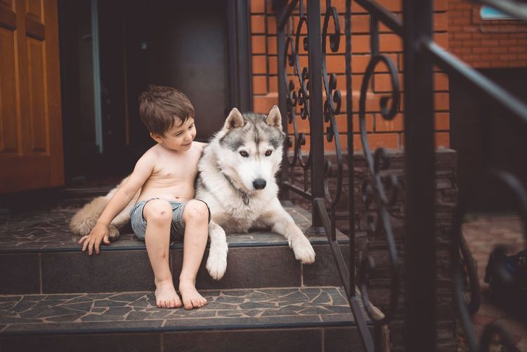 Boys Canine Child Childhood Dog Domestic Domestic Animals Full Length Innocence Leisure Activity Lifestyles Mammal Men One Animal One Person Pets Real People Vertebrate