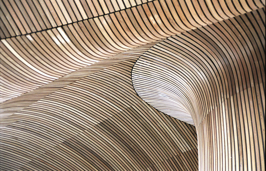 Architecture Backgrounds Bent Cardiff Bay Ceiling Close-up Curved  Design Dome Indoors  Landmark Light Low Angle View Modern No People Pattern Pillar Richard Rogers Slats Striated Sweeping Textured  Undulating Waves Welsh Assembly Wood