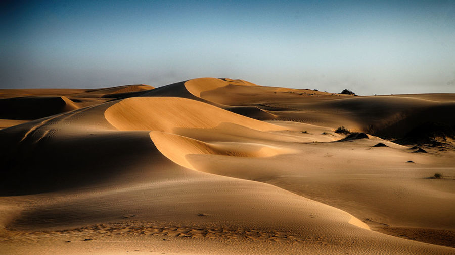 Dunes OMAN Sand Land Sand Dune Desert Landscape Arid Climate Climate Sky Scenics - Nature Environment Beauty In Nature Tranquil Scene Tranquility Nature Non-urban Scene Day No People Remote