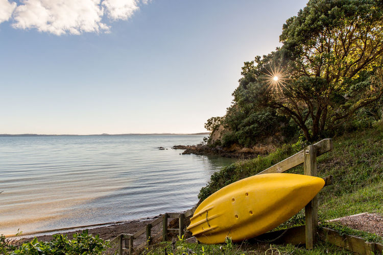 Yellow kayak on Waiheke Island in New Zealand. Beach Beauty In Nature Day Kayak Kayaking Nature No People Outdoors Sea Tree Waiheke Island Water