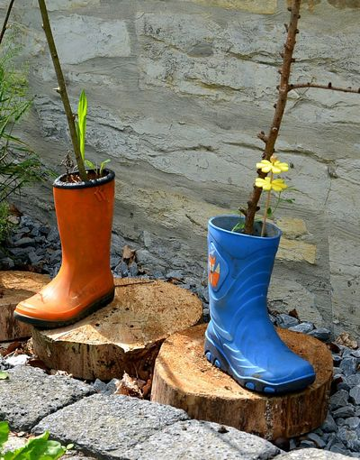 Art is Everywhere Two Is Better Than One Apairofshoes Garden Photography Outdoors Dekoration Shoes Of The Day Stiefel Colors Of Life Colors Rainboots Bootspotting Boots Blueorange Vase Blumenvase Streetphotography Plantpot Blumentopf Apair Flower Arrangement Flower Pot Decorative Urn