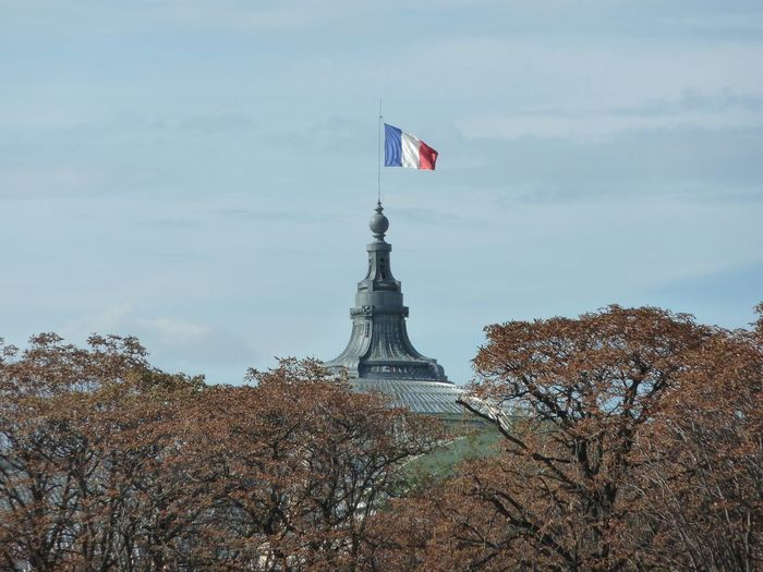 Low angle view of french flag on building against sky